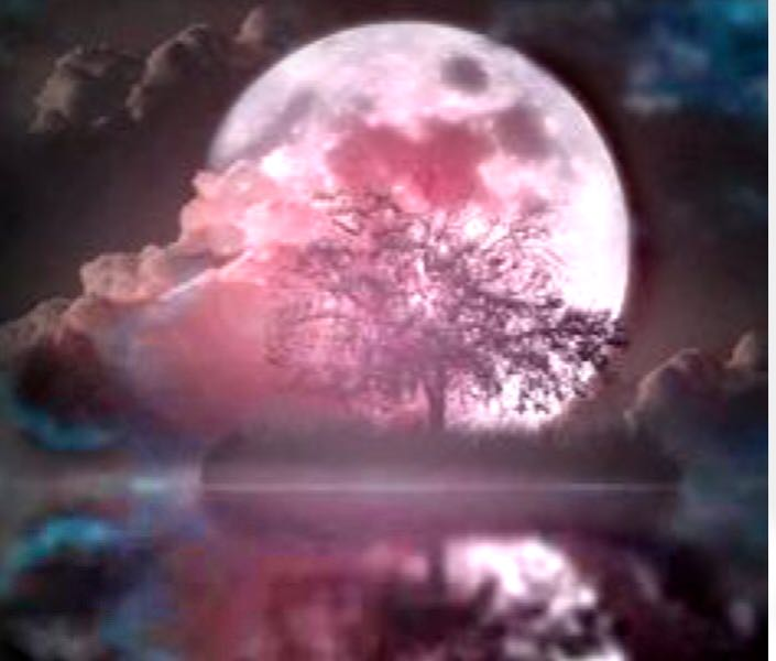 Full Moon In Scorpio Pink